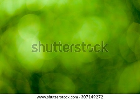Green bokeh soft background #307149272