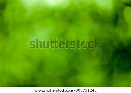 Green bokeh soft background #309951245