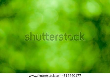 Green bokeh soft background #319940177
