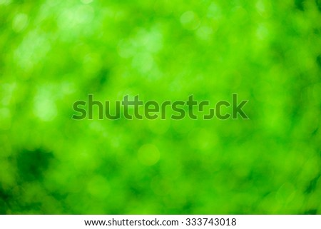 Green bokeh soft background #333743018
