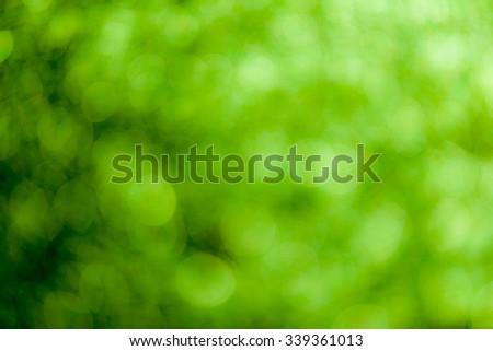 Green bokeh soft background #339361013