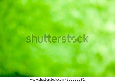 Green bokeh soft background #358882091