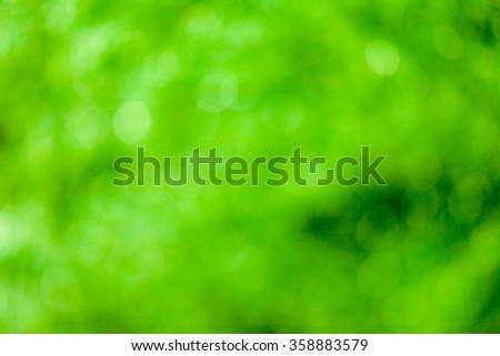 Green bokeh soft background #358883579