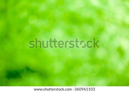 Green bokeh soft background #360961103