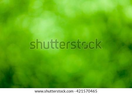 Green bokeh soft background #421570465