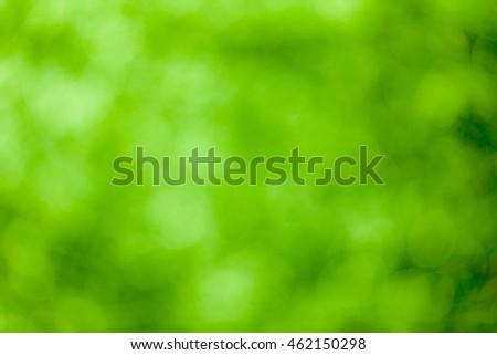 Green bokeh soft background #462150298