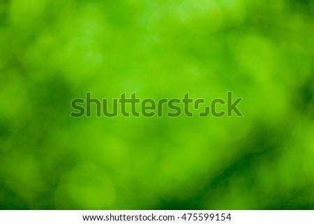 Green bokeh soft background #475599154