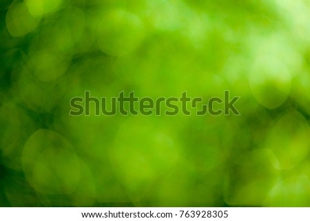 Green bokeh soft background #763928305