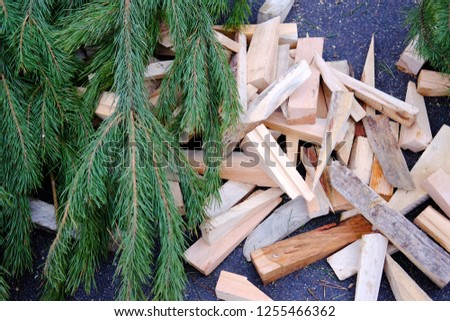 green branches and sawdust for recyclables, the subject of biomaterials recycling