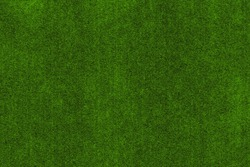 Green bright fresh background, reminiscent of the natural organic texture of moss or grass on top