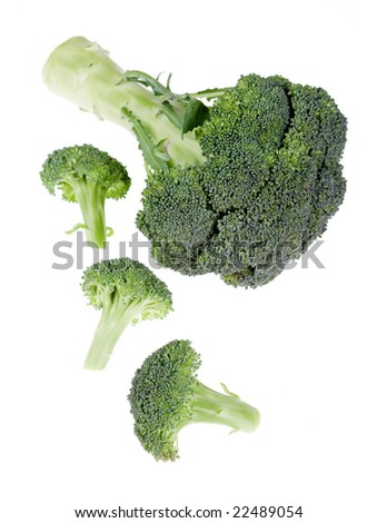 Green broccoli flowers isolated on backlit white background without shadows