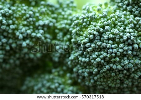 green broccoli macro