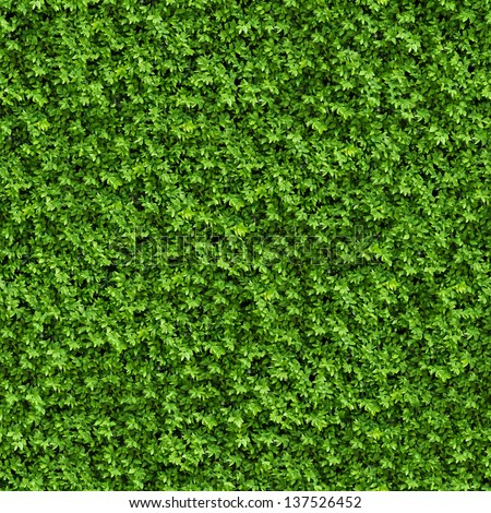 Green Bush. Seamless Tileable Texture.