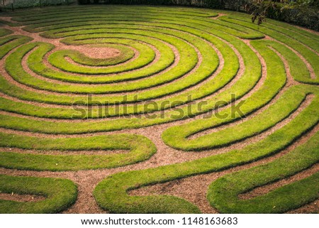 Green bushes circular labyrinth