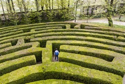 Green bushes labyrinth, hedge maze. A young boy with blue jacket searches the exit.