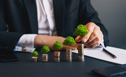 Green business growth. Businessman holding coin with tree growing on money coin stack. Finance sustainable development.