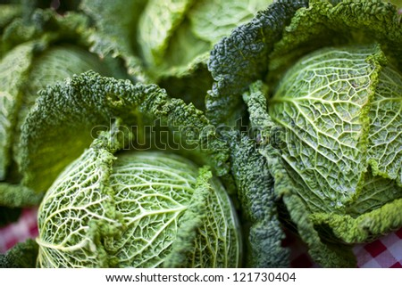 Green cabbage on market stall