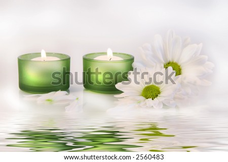 Green candles and daisies near water reflection on dreamy white background