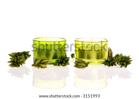 Green Candles and potpourri on white - stock photo
