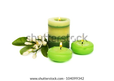 Green candles,  citrus flowers  isolated on white background.