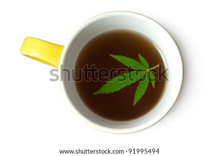 Green Cannabis (Marijuana) leaf in cup of tea isolated on white - stock photo