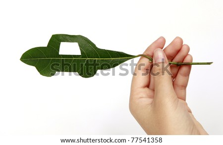 Green car cut from leaf on hand