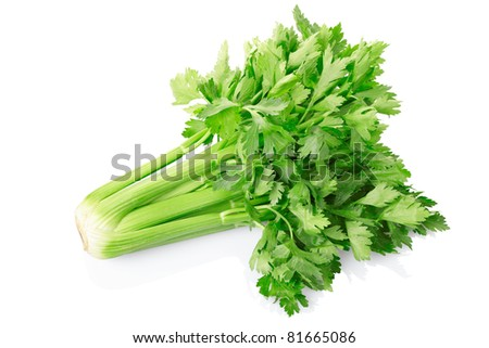 Green celery isolated on white background, clipping path included