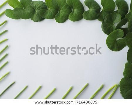 Free photos Leaf-frames | Avopix.com