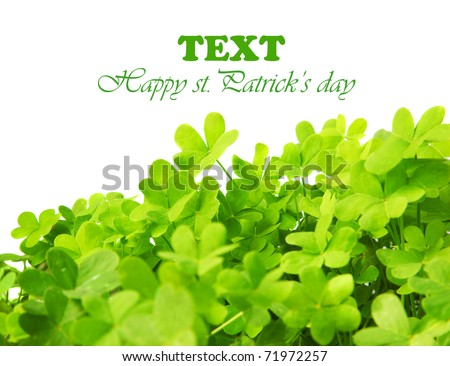 Green clover holiday border, st.Patrick's day decoration isolated on white background with text space - stock photo