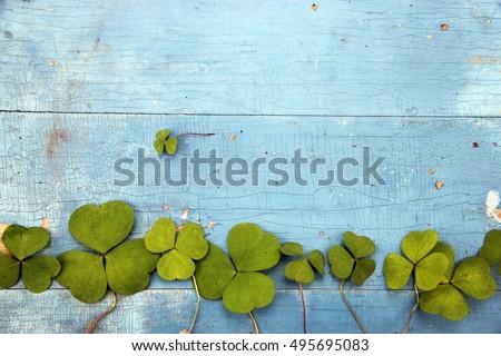 Green clover leaf on wooden background