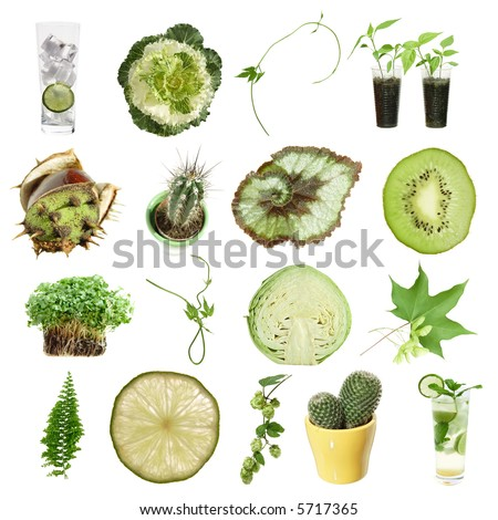 green collection (green objects isolated on white)