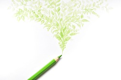 Green color pencil drawing leaf