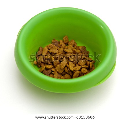 Green colored plastic pet bowl filled with brown cat food biscuits