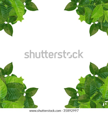 green corner frame - similar images available - stock photo