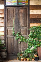 Green corner of a house with wooden wall and door having a green creeper plant and flower pots on the ground