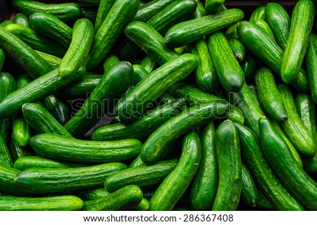green, cucumbers, on shelf, supermarket