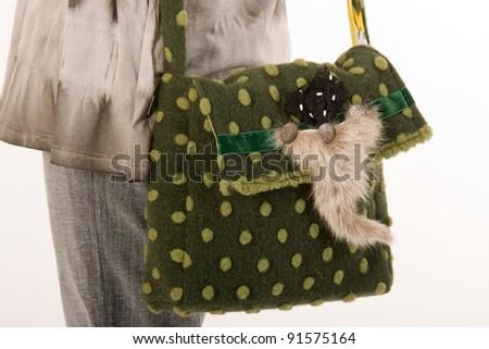 Green designer shoulder bag with feathers /bag