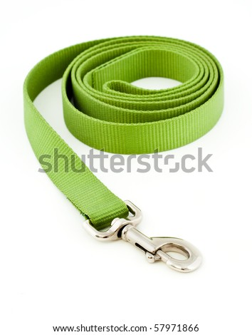 Green Dog Leash Isolated on White #57971866