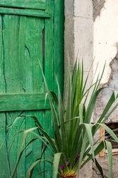 Green door in traditional house and yukka plant in Arona Tenerife Spain