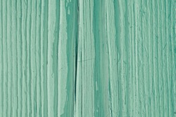 Green dry wooden surface, cracked with age. Natural textured summer background, wallpaper or backdrop. Faded paint on old wood. Hard sunlight with shadows. Close-up