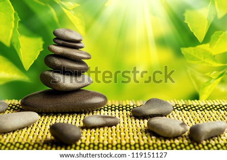 green eco background with spa stones and leaves with sunlight