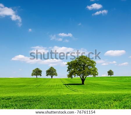 Green ecology landscape