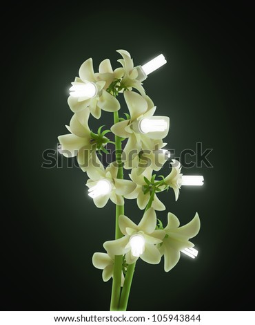 Green energy concept - a plant with energy saving bulb flowers