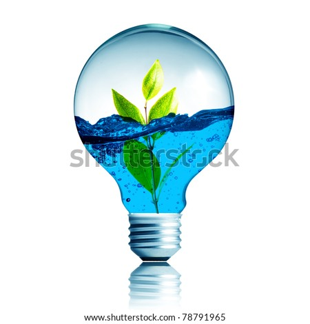 green energy concept, plant growing inside the light bulb fill with blue water