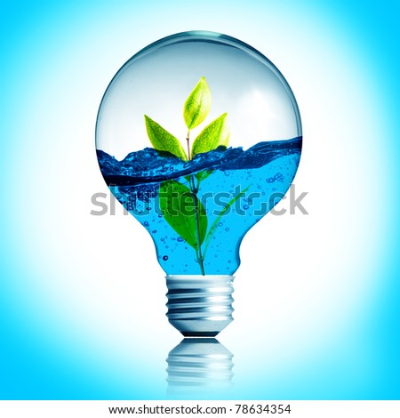 green energy concept, plant growing inside the light bulb fill with water