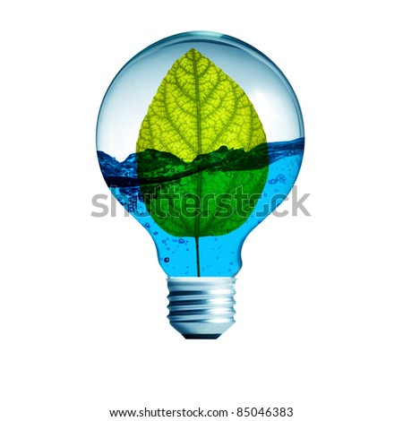 green energy concept, plant growing inside the light bulb with water - stock photo