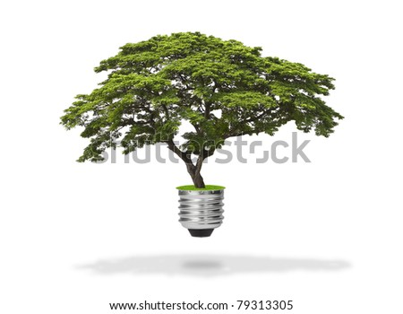 green energy eco concept, tree growing out of bulb