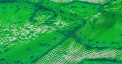 green fabric with snakeskin pattern, background texture of bright green fabric close up. background, texture, pattern