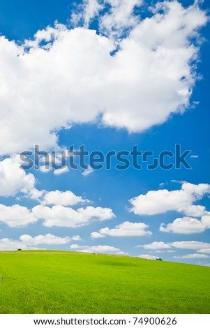 green farm land with a blue sky