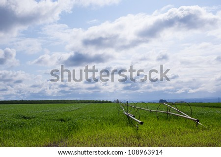 Green farm land with cloudy sky